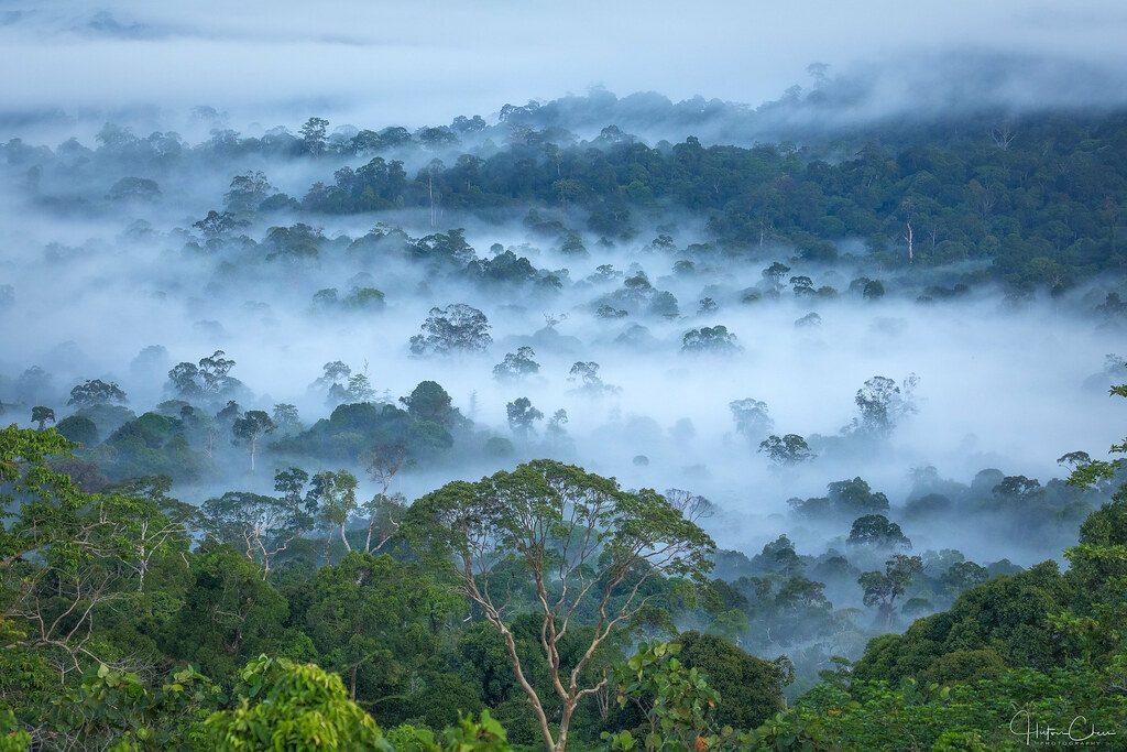 Nama Lain Pulau Kalimantan