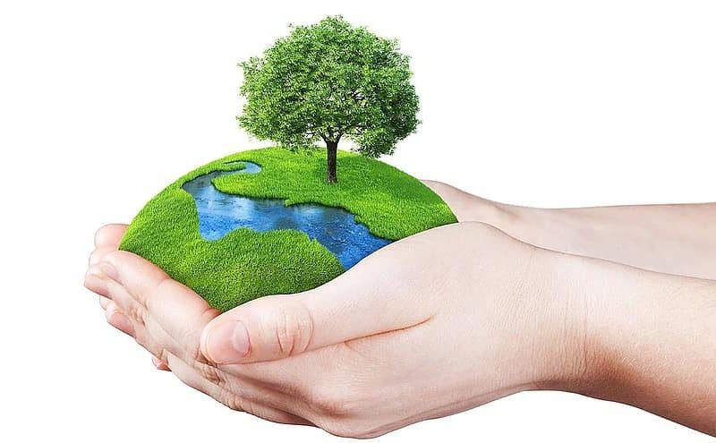 Apa-Saja-Kewajiban-Kita-Terhadap-Lingkungan