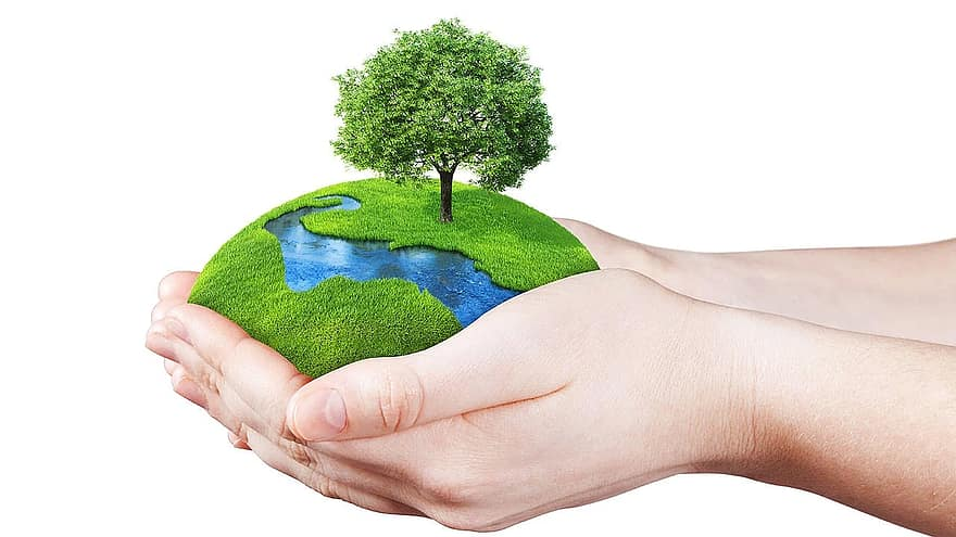 Apa Saja Kewajiban Kita Terhadap Lingkungan